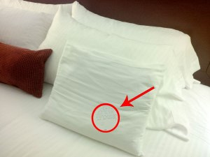Small note, thin pillow, big surprise.